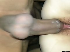 Hard Schlong Penetrating A Hairy Vagina